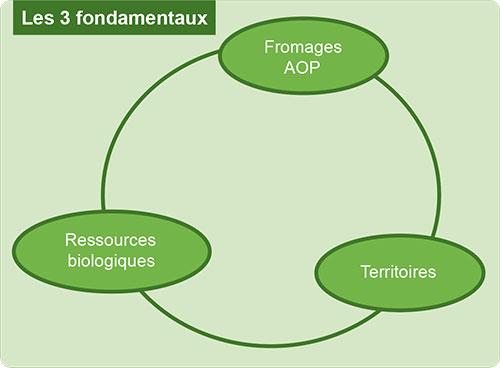 Fondamentaux des AOP